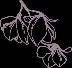 Storme Flower pattern